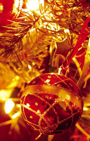 Um Feliz Natal e um 2011 repleto de realizações a todos nós e ao JAC